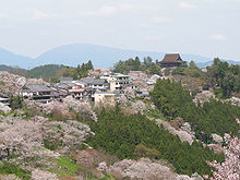 220px-Cherry_blossoms_at_Yoshinoyama_01
